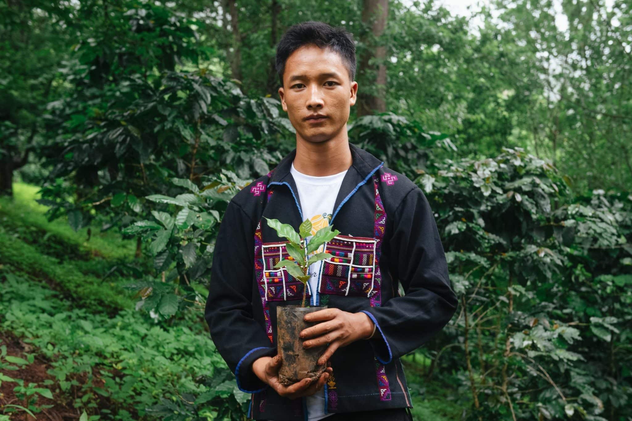Ein Mann mit einer jungen Kaffepflanze